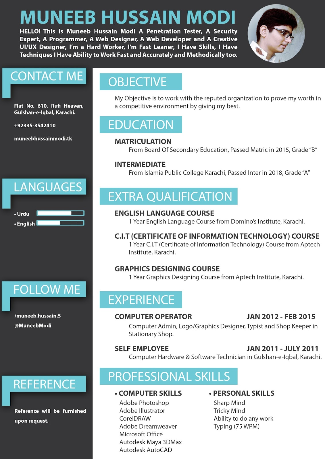 Professional Creative 1 Page Resume