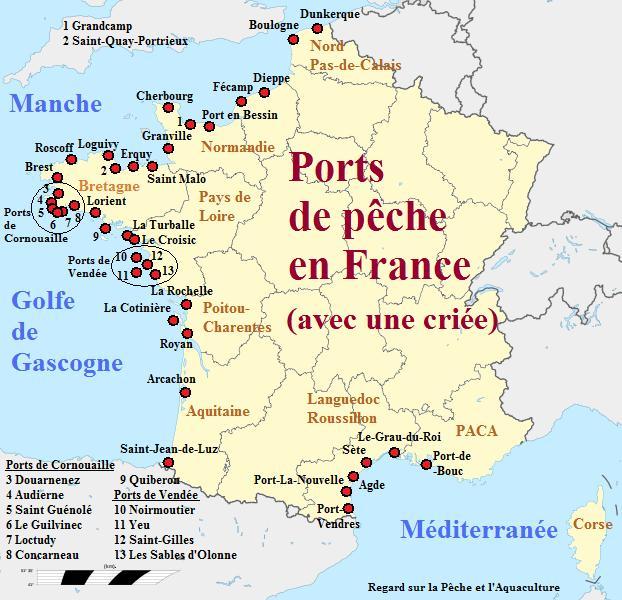 Vente directe du poisson les cri es devront faire avec - Plus grand port de plaisance d europe ...