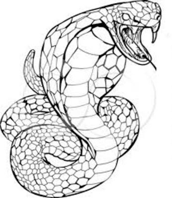 Cobra Coloring Pages for Kids
