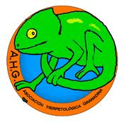 Información sobre la AHG