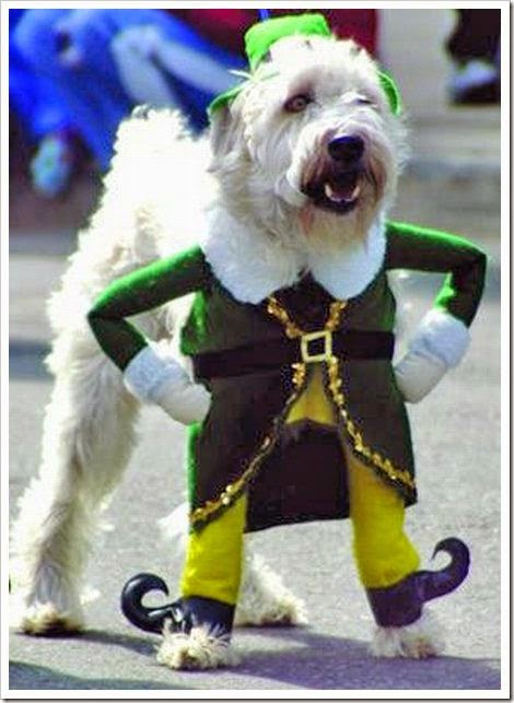 funny dog clothes for christmas illusion dress up your dog look like a santa standing