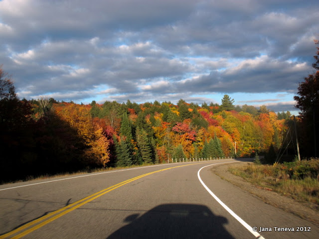 Canadian autumn colours in Ontario