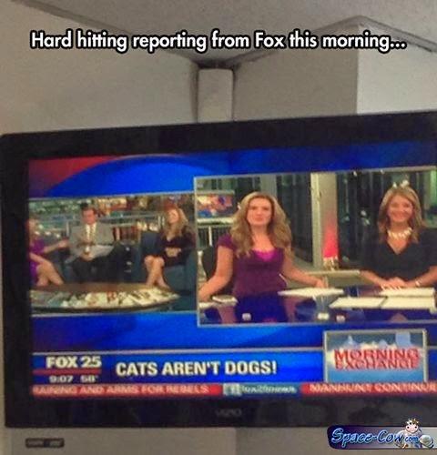 funny things people humor