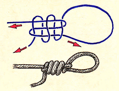 knot drawing