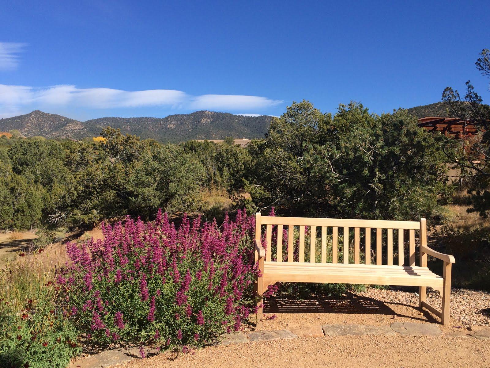 Garden Musings from Memphis Area Master Gardeners: A Gem of a ...