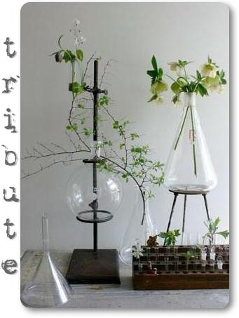 blommor och vetenskap