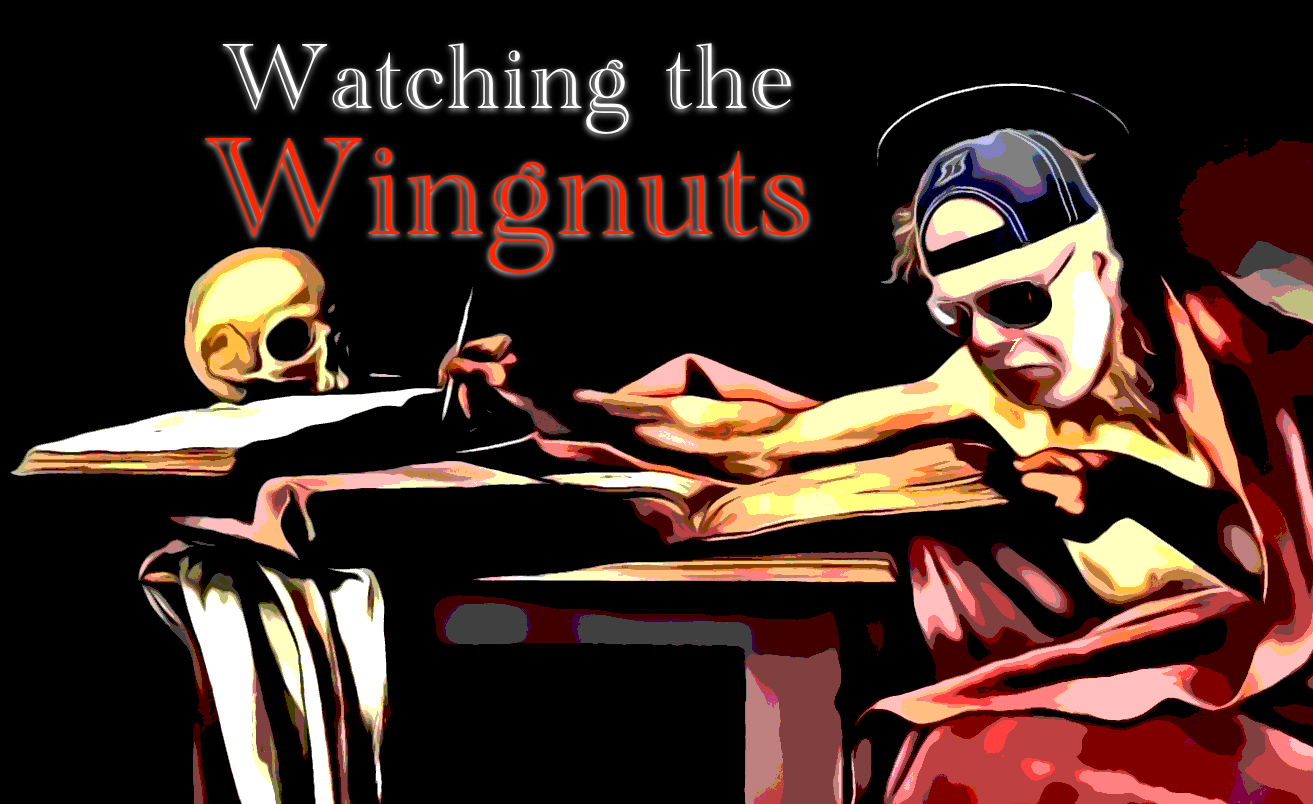 Watching the Wingnuts