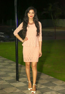 Richa Panai in lovely Short Skirt at Chandamama Kathalu Award winning press meets