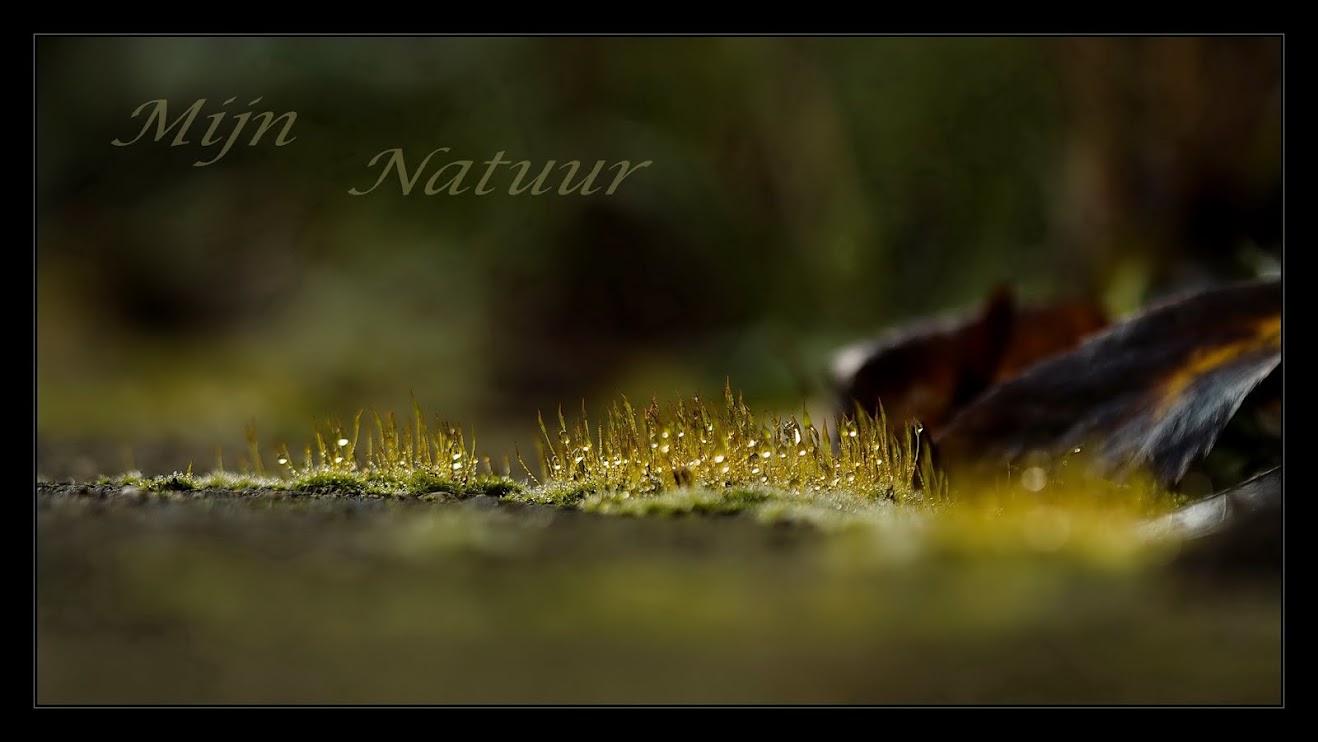 mijn-natuur