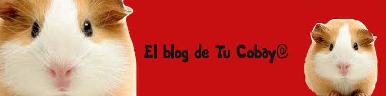 El blog de Tu cobaya