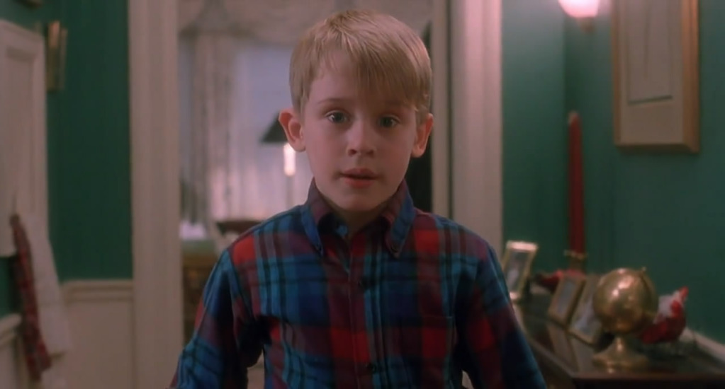 Home Alone  In Hindi Free Download