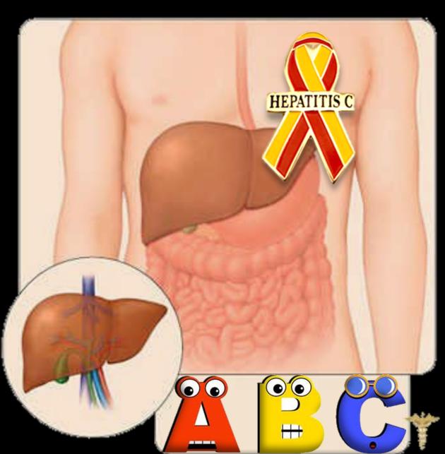 Альтернативная медицина для вашего здоровья: ГЕПАТИТЫ - ВОПРОСЫ И ОТВЕТЫ