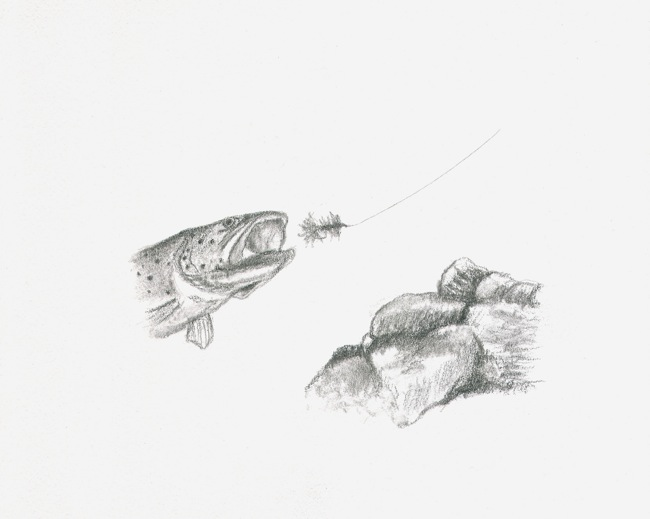 Fly fishing pencil drawings