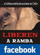 Liberen a Ramba . org
