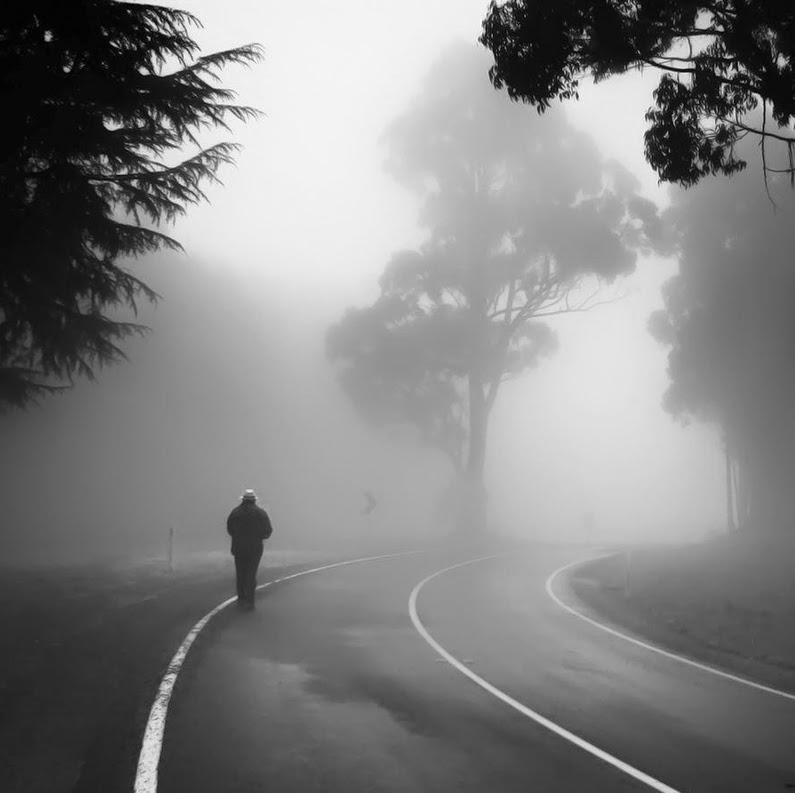 Into the Mist, Sonja Rolton