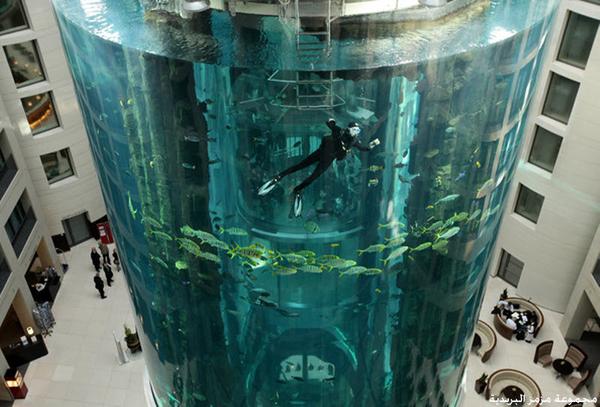أغرب مصعد كهربائي في العالم