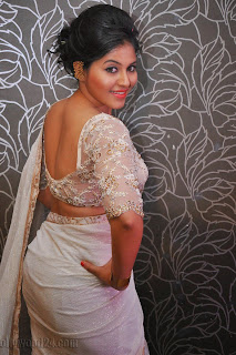 Anjali latest Glamorous pics in saree 038