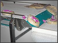 NeXtgen II Sanitary Conveyor From Arrowhead Systems Featuring a Plastic Modular Belt.