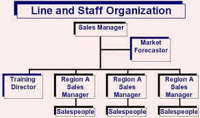 staff organization structure