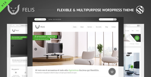 Felis WordPress Theme Free Download by ThemeForest.