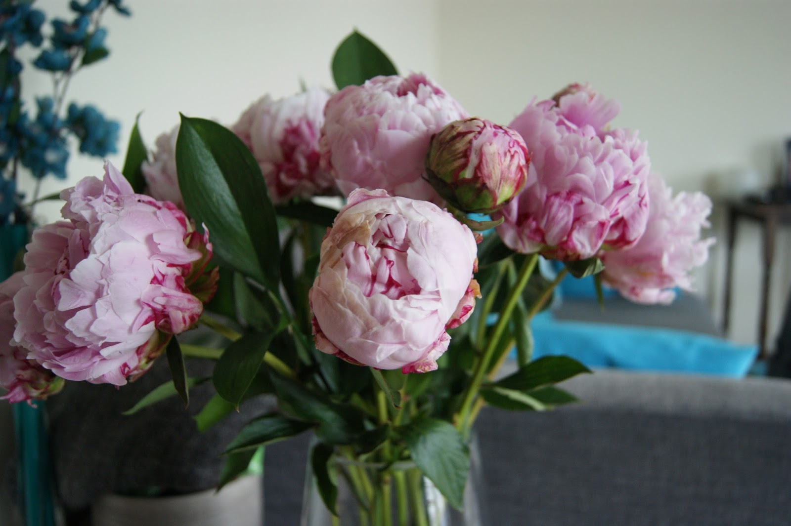 Pretty peonies from debenhams flowers frills n spills i mean how could you not love them they are just so unashamedly vibrant reviewsmspy