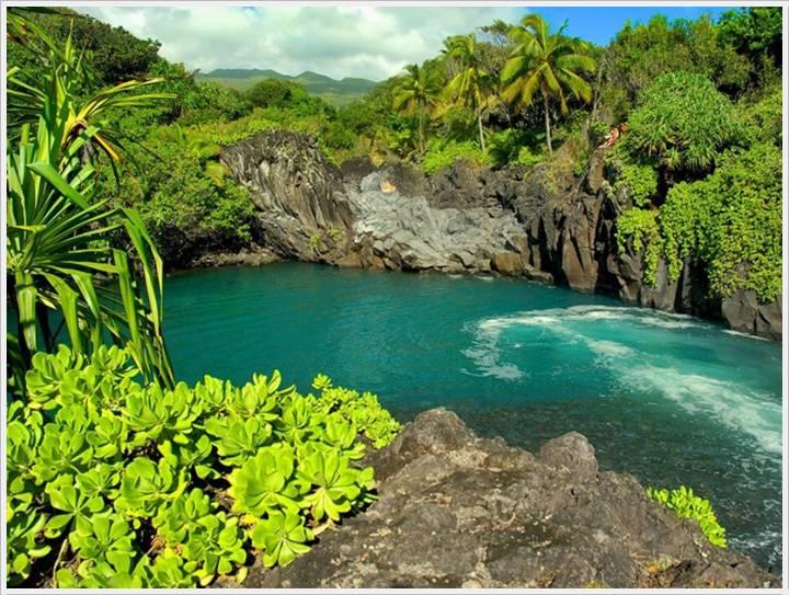Strange Facts Green Gardens Of Maui