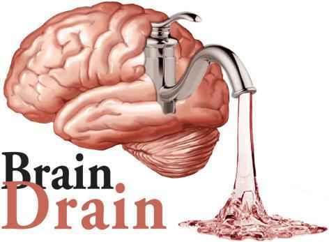 Brain Drain1