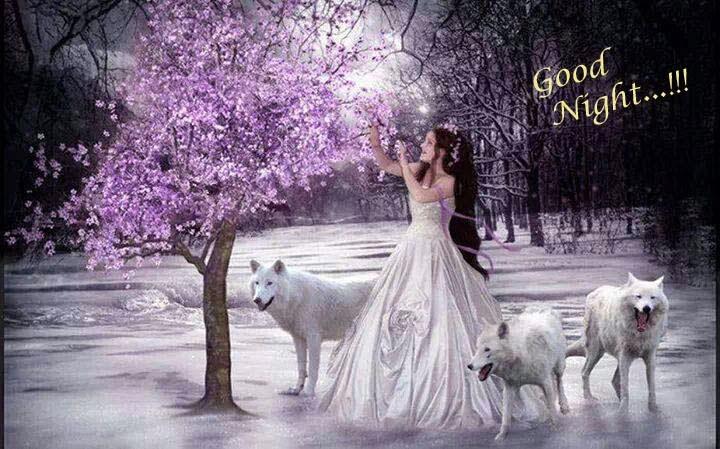 Lovely good night wallpapers allfreshwallpaper for Nice romantic scenes