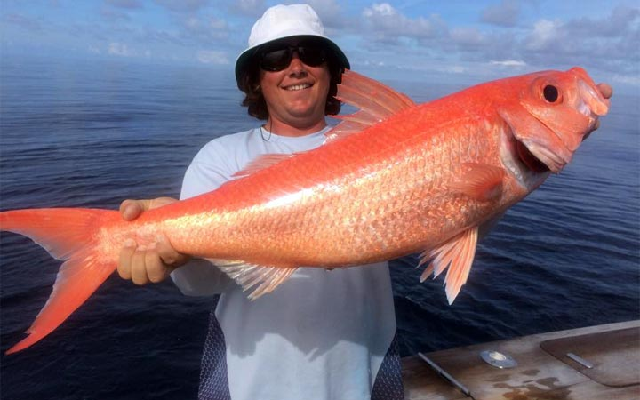 January Ft. Lauderdale Offshore Fishing Report with Capt. Kevin Cote