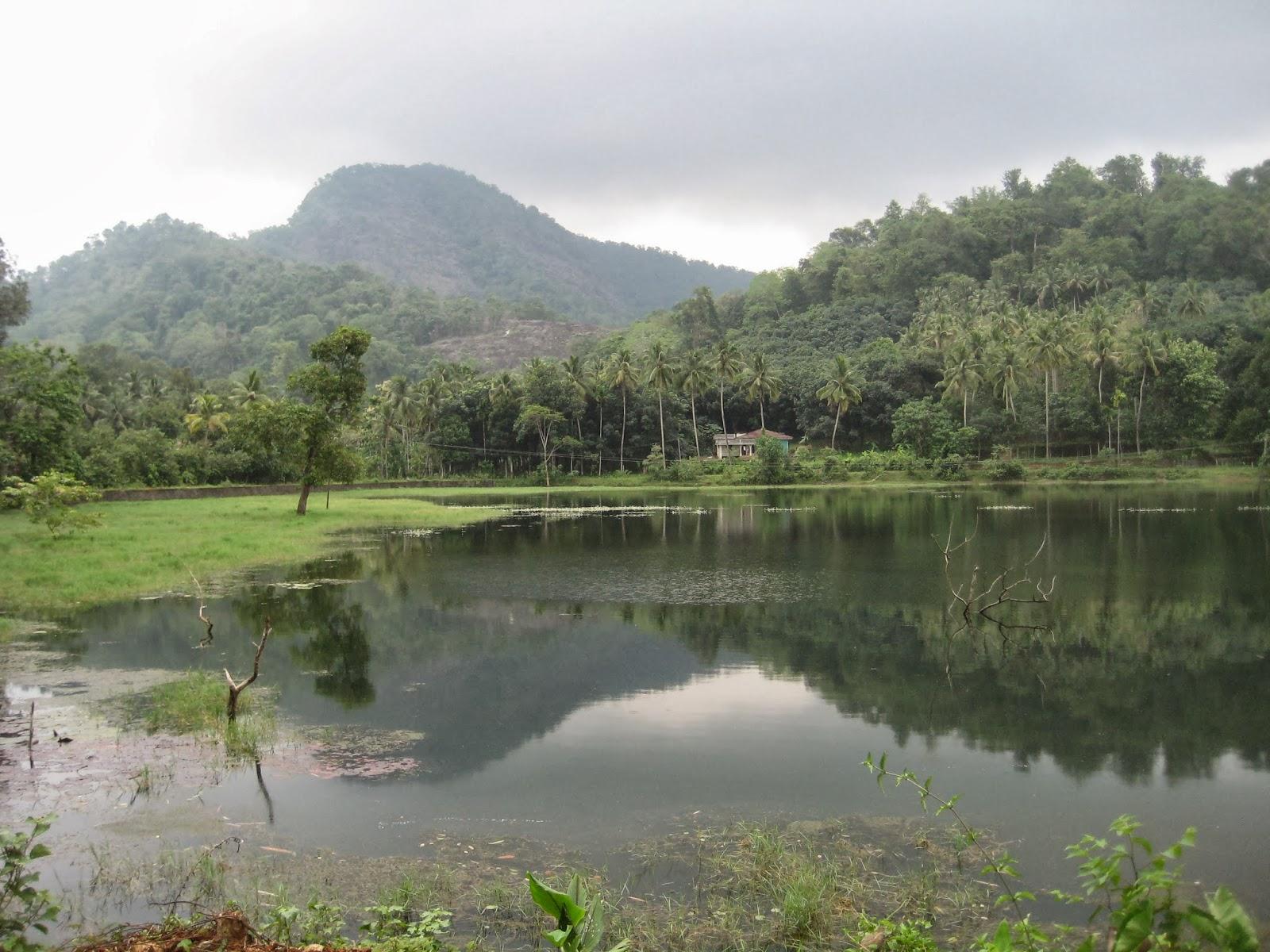 Salim Ali Bird Sanctuary Kerala Salim Ali Bird Sanctuary
