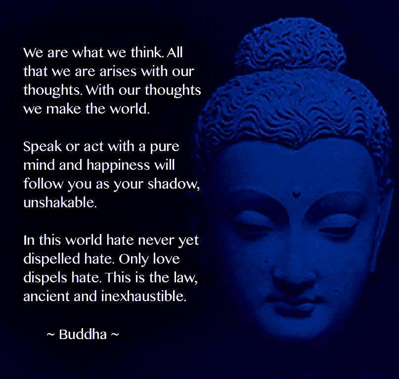 Consciousness Energy Path 111  May 2013Quotes About Karma Buddha