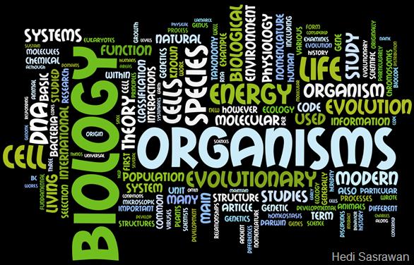 urutan Organisasi kehidupan