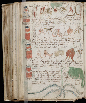 Voynich_Manuscript.jpg