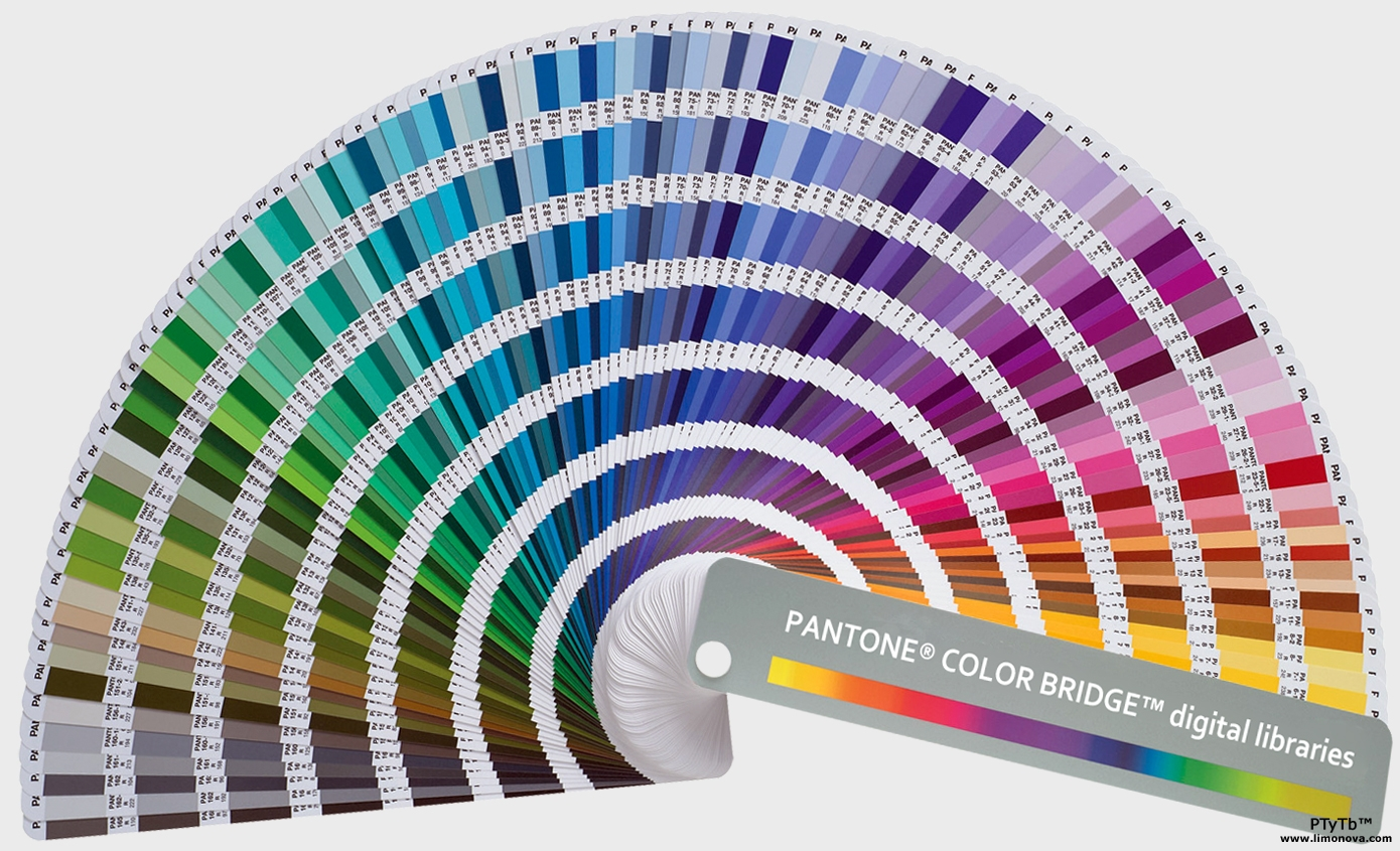 Life in color pantone color projects pantone color projects nvjuhfo Images
