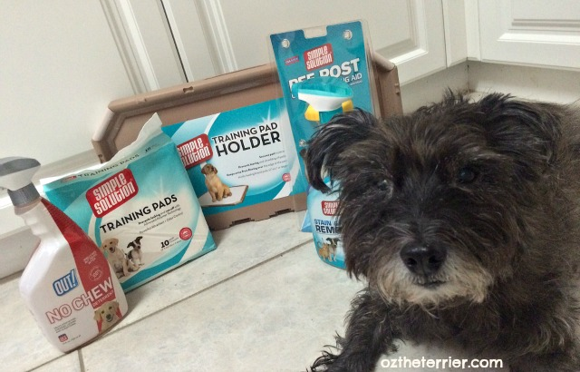 Oz the Terrier with Simple Solution products found in New Puppy Holiday Bundle by RPG