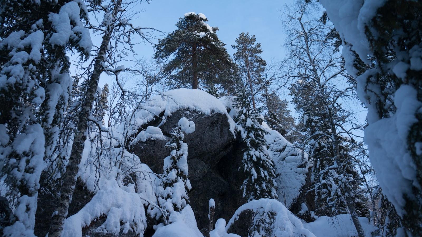 Syötteen kansallispuisto 7.12.2013