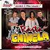 FORRÓ RASTA CHINELA CD AGORA É PRA VALER AO VIVO 2015