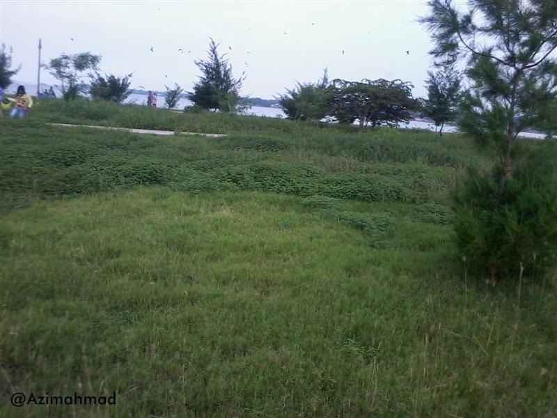 Semak ditaman dilokasi wisata, Saran dan kritik untuk fasilitas umum Wisata Pantai Boom Tuban.