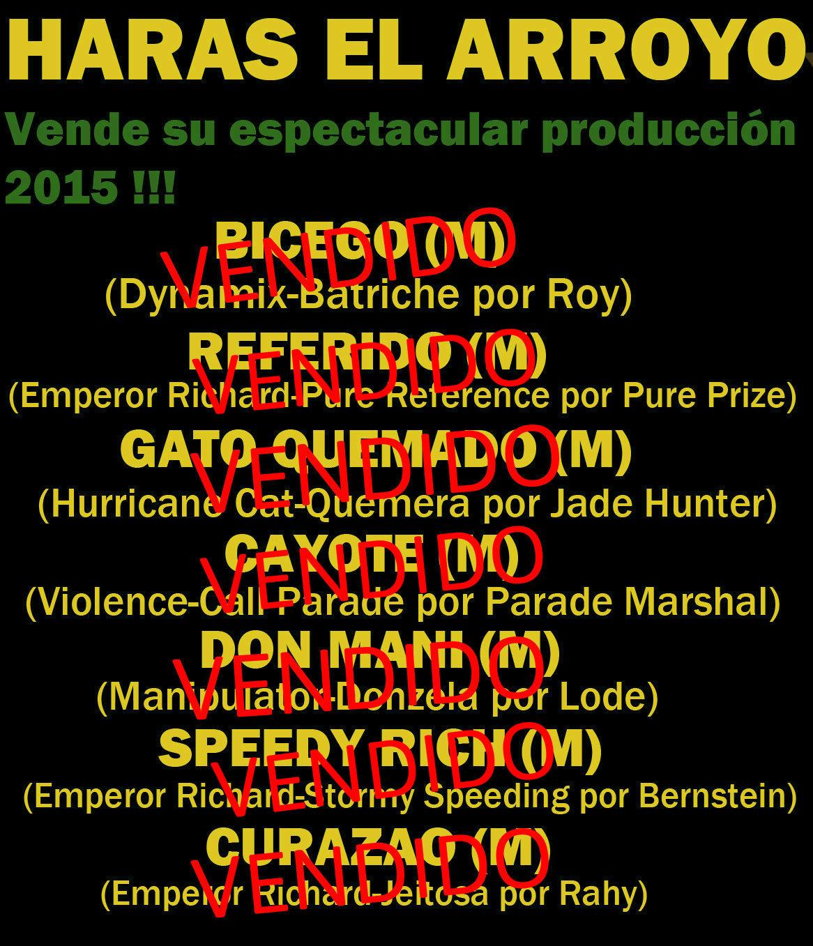 HS EL ARROYO