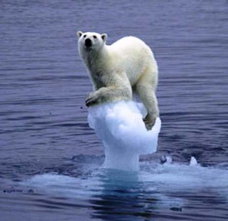 Kondisi Laut Sedunia Semakin Memprihatinkan [ www.Up2Det.com ]