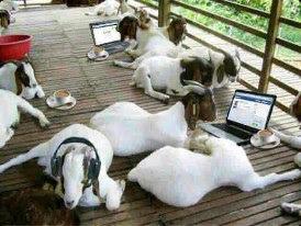 Dampak Kemajuan Teknologi