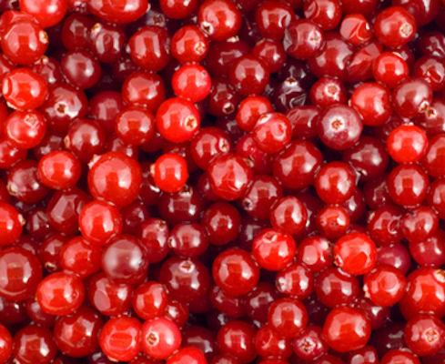 denumiri de fructe