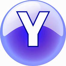 THE Y FILE