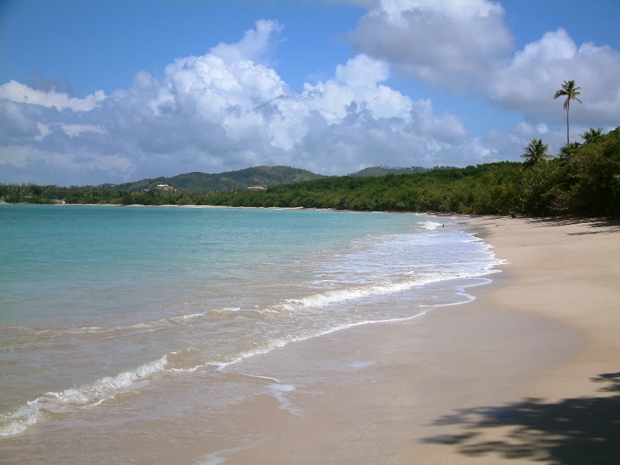 Tobago beaches, Buccoo Beach