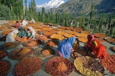 Между Индией и Пакистаном существует местность, которая известна своими долгожителями.
