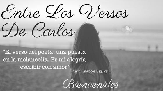 Entre Los Versos De Carlos