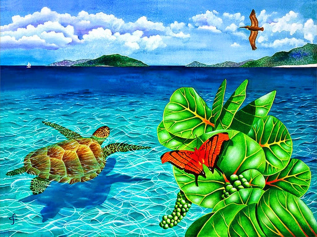 paisajes-acuaticos-de-mundo