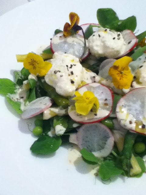 Spring Salad with fresh ricotta and radish