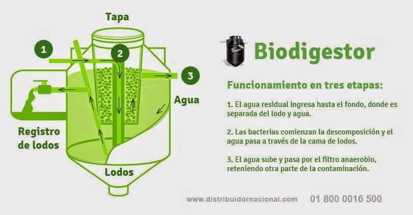 Funcionamiento del Biodigestor Rotoplas