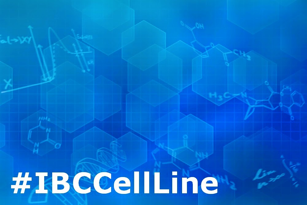 Cell Line Development Time Line Reduction